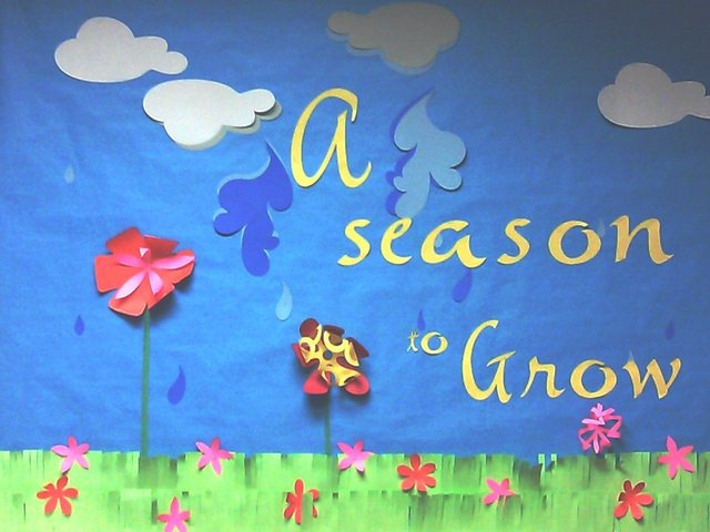 A spring bulletin board using Cricut Expression and cartridges Jasmine, Noah's ABC Animals, and Accent Essentials.