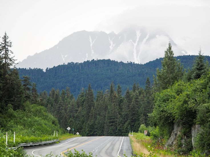 Alaskassa autolomalla - Kenain penisulaa ristiin rastiin