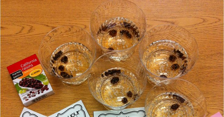 We had good, fizzy fun with the scientific method today as we performed a dancing raisins experiment! This one is a favorite of mine every y...