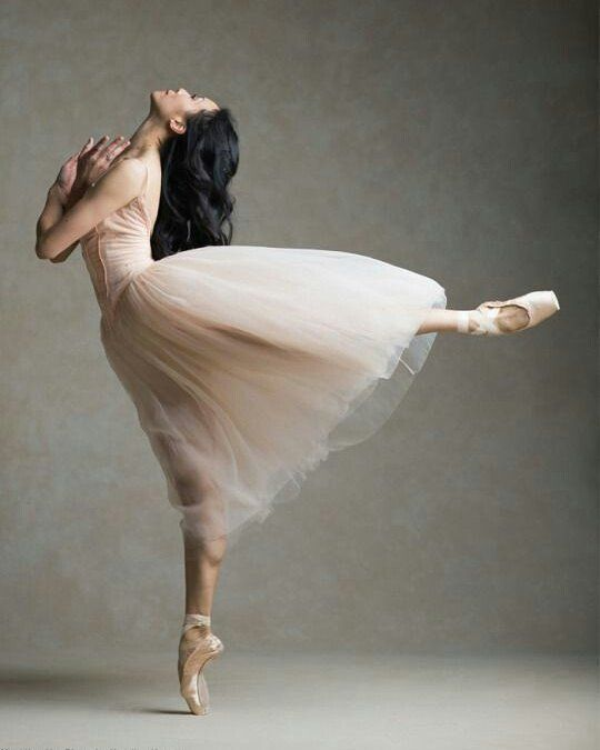 80 best instagram images on pinterest ballerinas ballet and 80 curtidas 1 comentrios maria cristina lopes marialopescristina no instagram stopboris Image collections