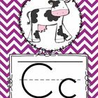 These *CHEVRON* alphabet cards are a BRIGHT addition to your primary classroom while providing your students a great reference for letter formation...