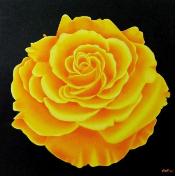 Irma Endrey: Yellow rose; oil on canvas