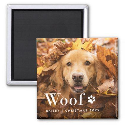 Woof | Your Dog's Photo and a Paw Print Magnet - simple clear clean design style unique diy
