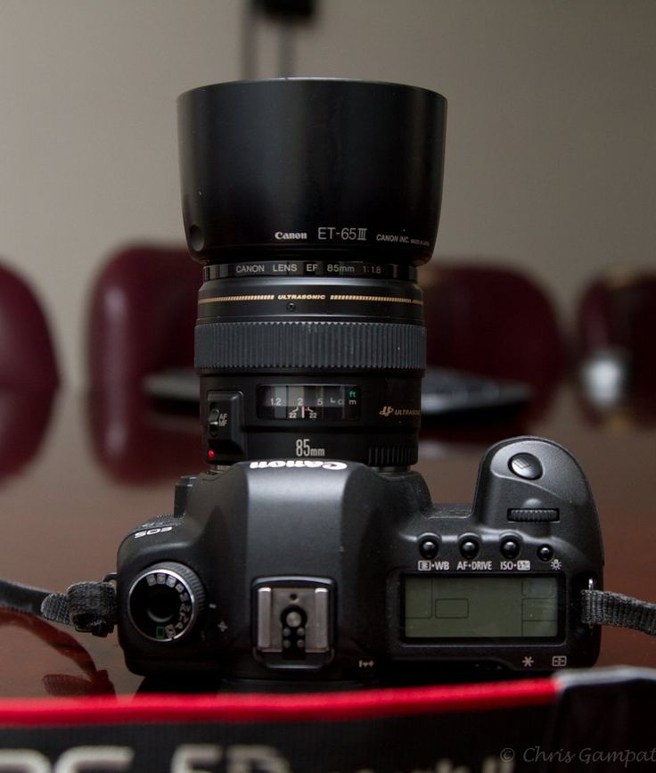 Chris Gampat The Phoblographer Canon 85mm F18 review (3 of 3)