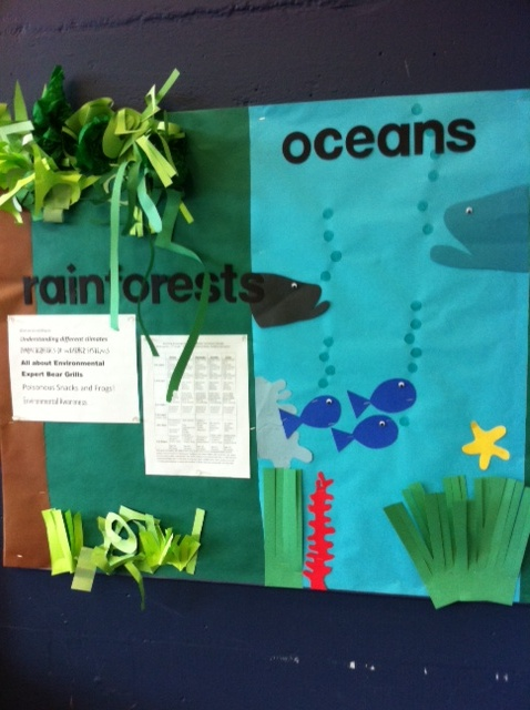 Classroom Warm Up Ideas ~ Ecosystems bulletin board science ideas pinterest
