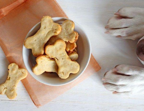 Köpeğimiz İçin Etli – Sebzeli Kıtır Bisküvi Tarifi http://www.ajanimo.com/kopegimiz-icin-etli-sebzeli-kitir-biskuvi-tarifi/