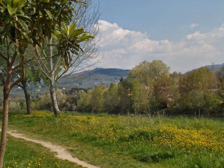Florenz wie es keiner kennt: Am Fluss entlang