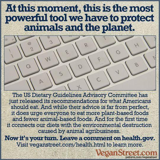 1000+ ideas about Health Gov on Pinterest | Health literacy, My ...