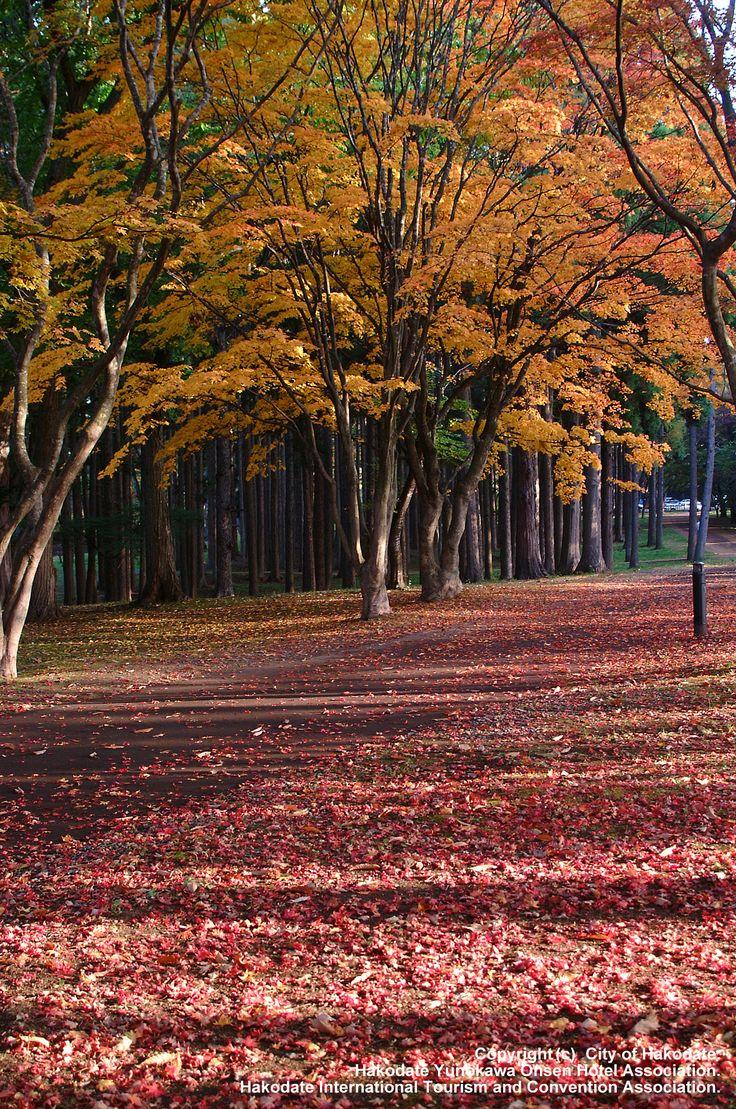 Kosetsu-en. Looking for more information aboout Hokkaido? Go Visit Hakodate International Tourism and Convention Association.  http://www.hakodate-kankou.com/