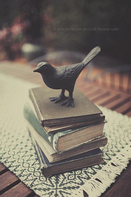 Bird and Books