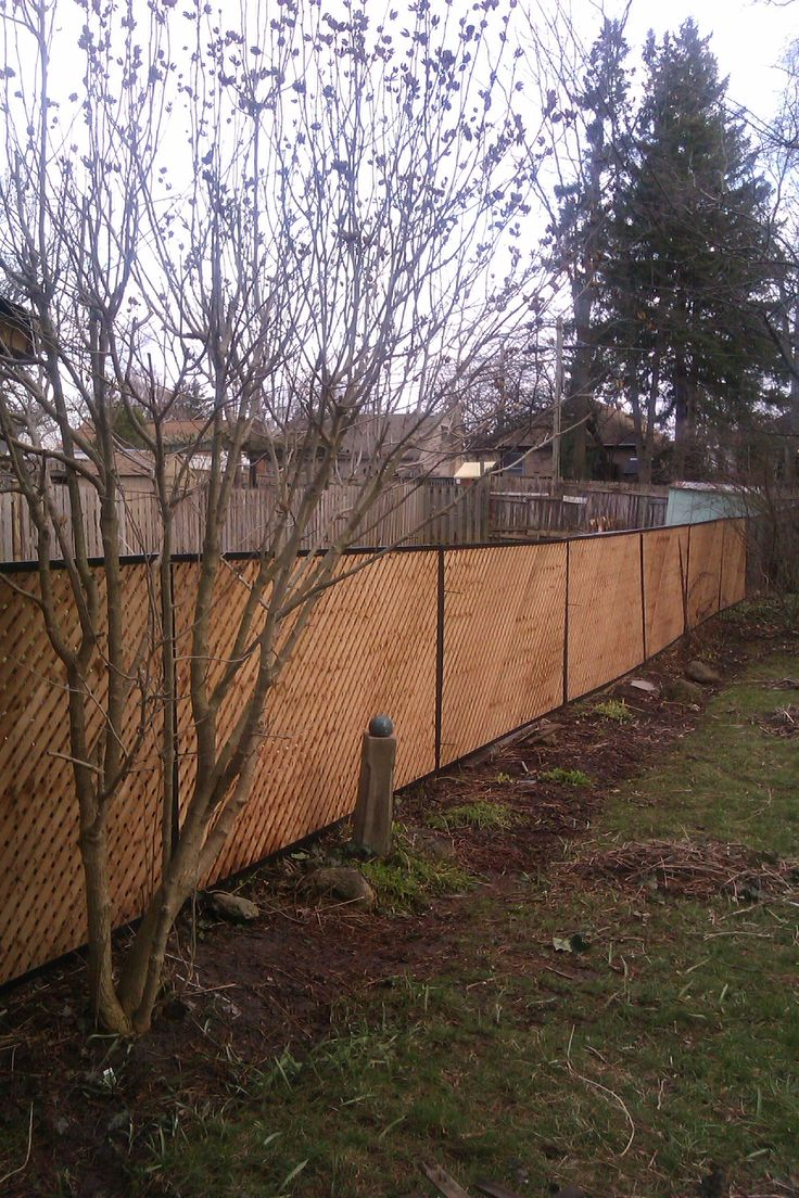 Privacy screen for chain link fence ebay - This Is The Long View Of My Solution To An Ugly Chain Link View Privacy