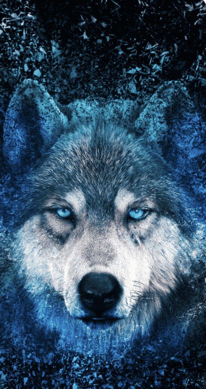 Epingle Par Sandrine Billy86 Sur Animaux En 2020 Animaux Loup Neon
