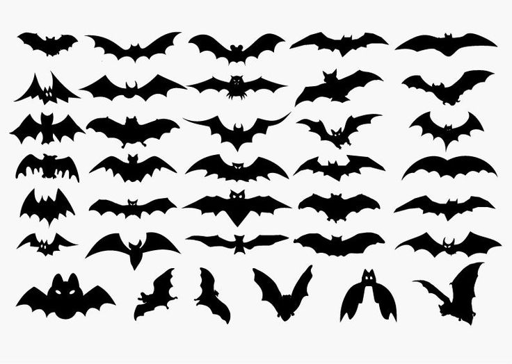 Printable Halloween Silhouettes | Vector Set of Halloween Bat Silhouette | Free Vector Graphics | All ...