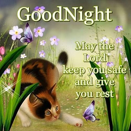 Nice Good Night Quotes With Images: 1137 Best Images About GOODNIGHT******** On Pinterest