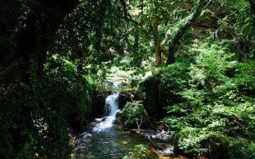 Palia (old) Kavala path: http://alternatrips.gr/en/macedonia/kavala/palia-kavala-path  #Old_Kavala_path