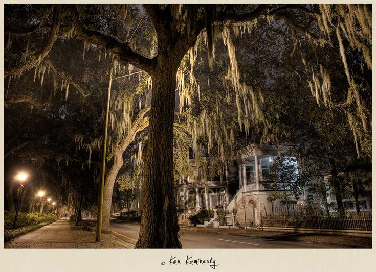 """The Haunting Beauty of Savannah at Night""  Location: Historic District, Savannah, Georgia USA"