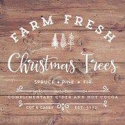 Printable Farm Fresh Christmas Trees