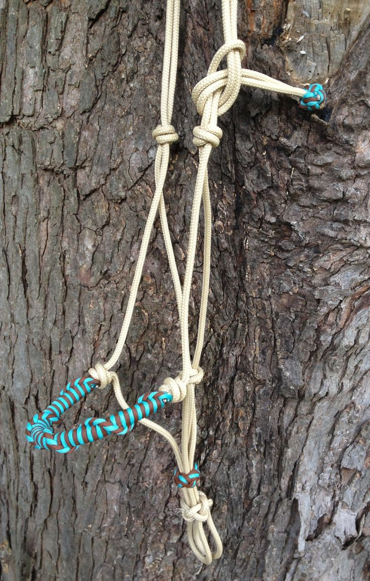 Custom handmade rope horse halter in beige. Spiral wrapped noseband and accent knots are in turquoise and chocolate brown. Buy online at www.justdandybeautique.com!  #ropehalter #horsehalter #paracord #custom
