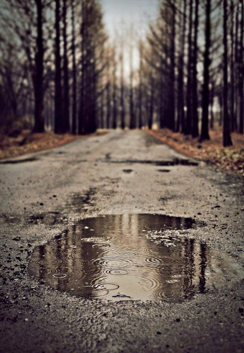 Rain...: The Roads, Back Roads, Autumn Fall, Inspiration Photography, Rainy Roads, Raindrop, Dirt Roads, Rain Drop, Photography Inspiration
