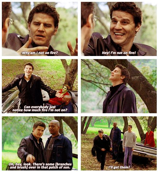 "Angel is not on fire.  Angel, Season 2 ""Over the Rainbow"".  I loved it when Angel acted like a dufus.  .gif"