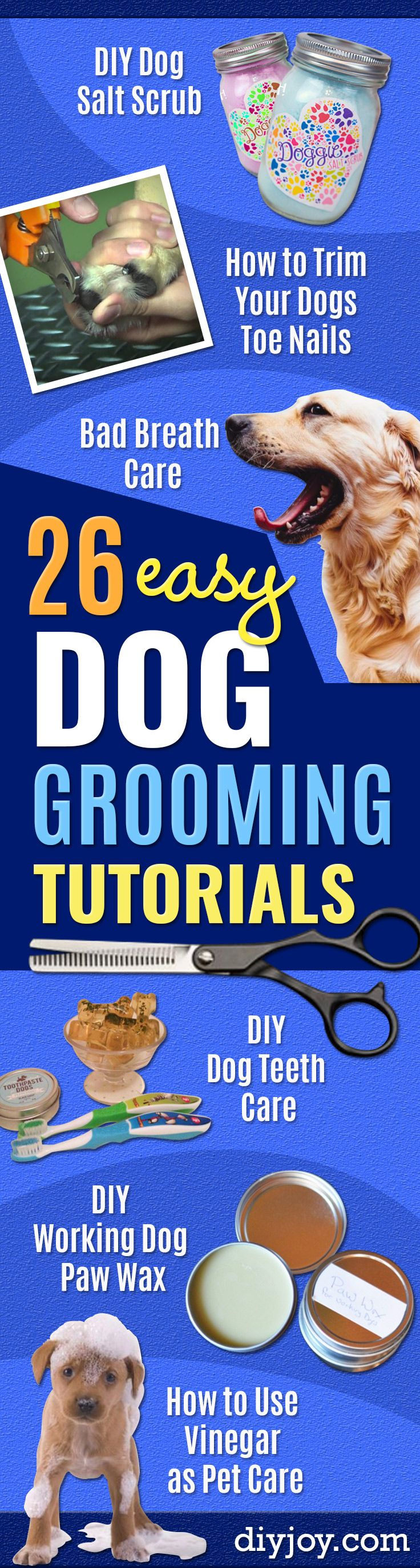 DIY Dog Grooming Tutorials - Cool and Easy Ways to Wash, Groom and Style Your Pets Fur - Trim Toenails, Brush Teeth, Bath, Trim and Clip Dogs Fur - Hair - Remove Fleas and Anti Itch - Save Money At The Groomer By Learning How To Do These Things At Home http://diyjoy.com/diy-dog-grooming