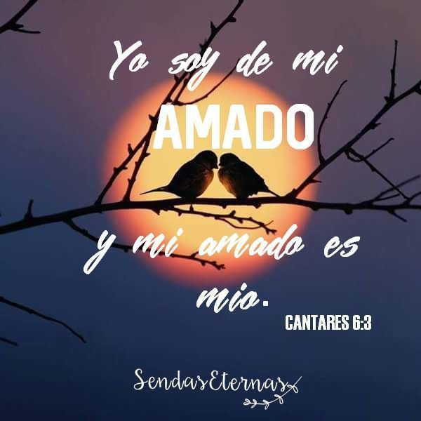 Pin De Patty Daboub En Frases Cantares Biblia Frases Dios
