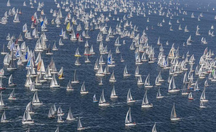 Spectacle dans le golfe de Trieste