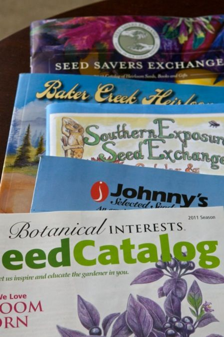 Heirloom Seed Companies.  A comprehensive list of where to buy your organic, non-GMO, and heirloom seeds to start next season!