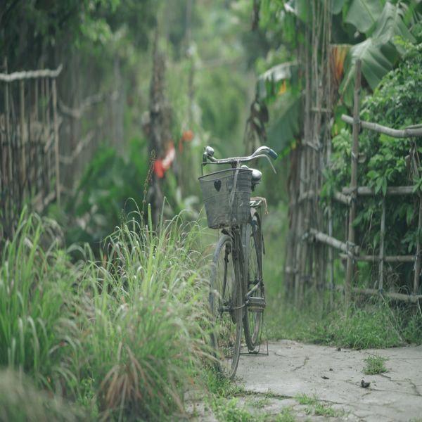 Bikes Comparison Bikes Bicycles Cannondale Mountain Bikes