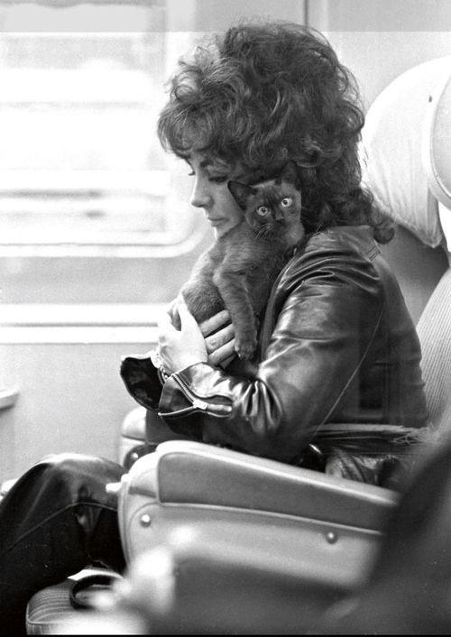 Elizabeth Taylor and a kitty friend, Paris, 1971.