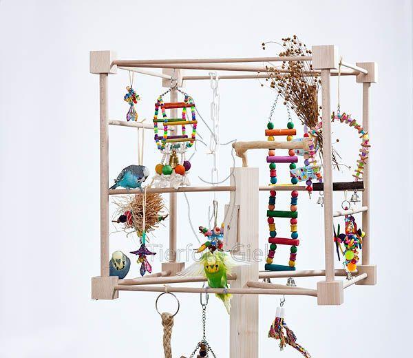 die besten 25 wellensittiche ideen auf pinterest sittiche papageien und vogel badeschale. Black Bedroom Furniture Sets. Home Design Ideas