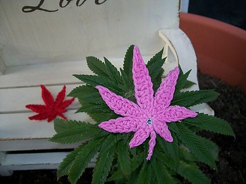 crochet cannabis leaf                                                       …