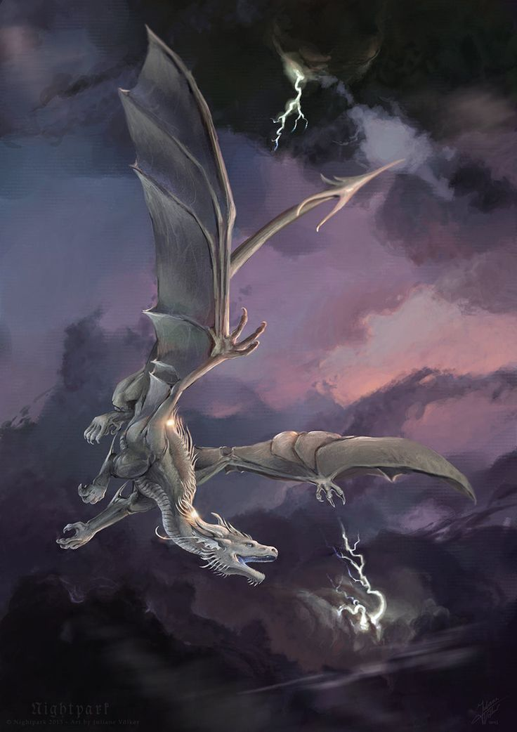 Silverdrak - Commission by *Nightpark on deviantART