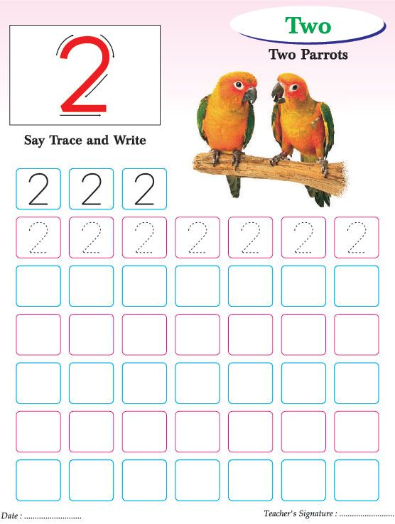 100 ideas to try about Nursery – Number Writing Practice Worksheets