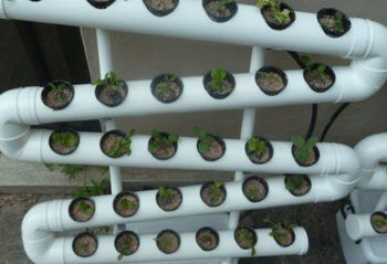 Cool Hydroponic Systems Round Up