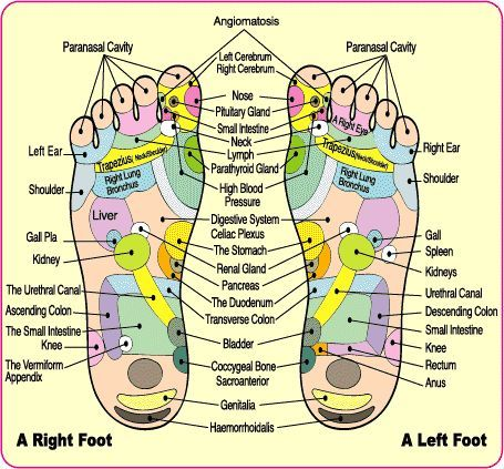 Detox Foot Bath – removes heavy metals from body....they are so cool and they make you feel great afterwards....I know from personal experience....they really do work and I use the Dtoxa cell foot detoxing bath and it works wonders...