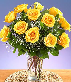 7 Best Bsp Images On Pinterest Yellow Roses Big Sisters And Daughters