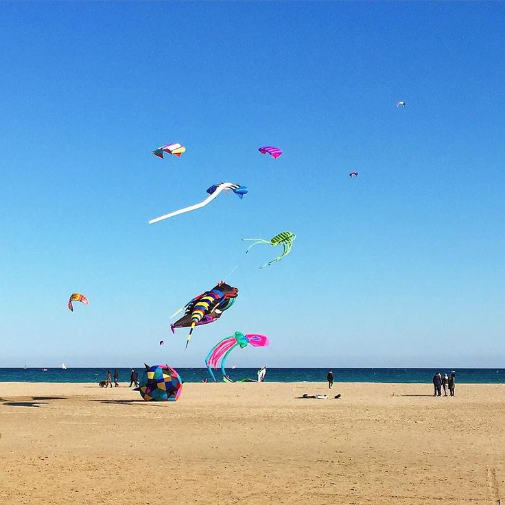 #kites #fishes #sea #poetto #sardinia