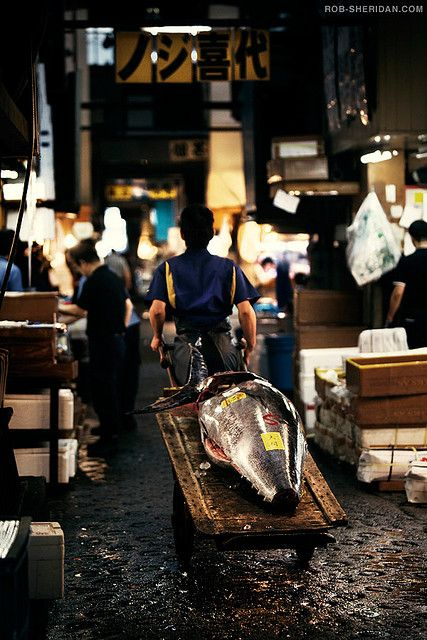 Tsukiji Fish Market - Tokyo, Japan. Will be an early morning need to be there BEFORE 8am!