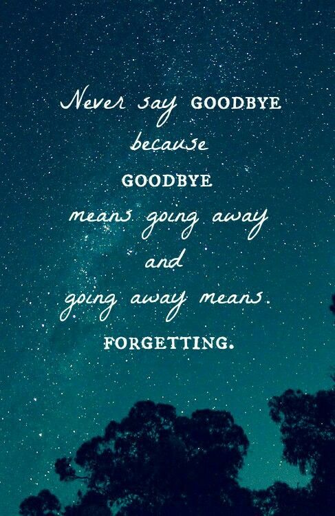 Best 25+ Never Say Goodbye Ideas On Pinterest