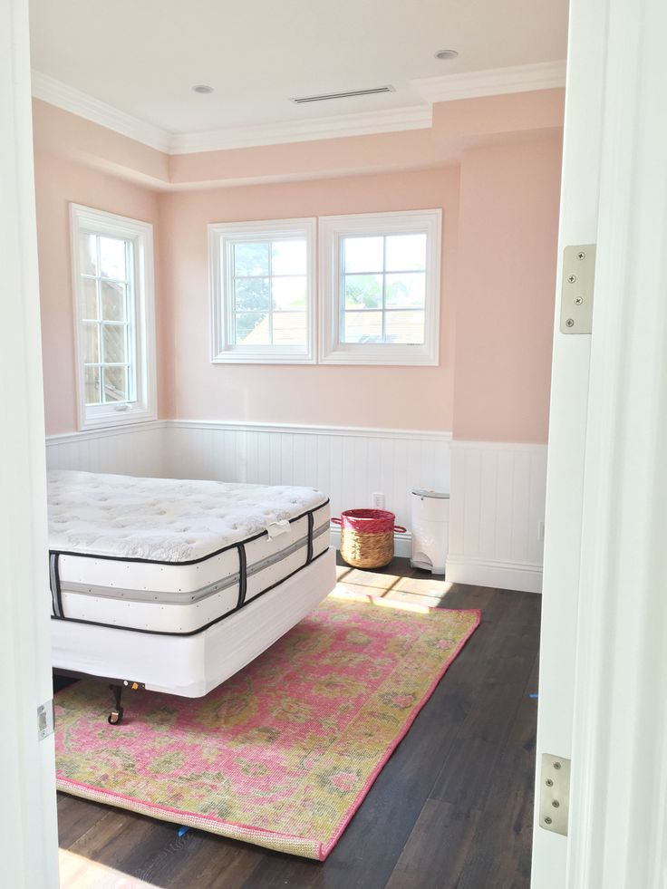 "Benjamin Moore ""Love & Happiness"" with white wainscoting and natural light"