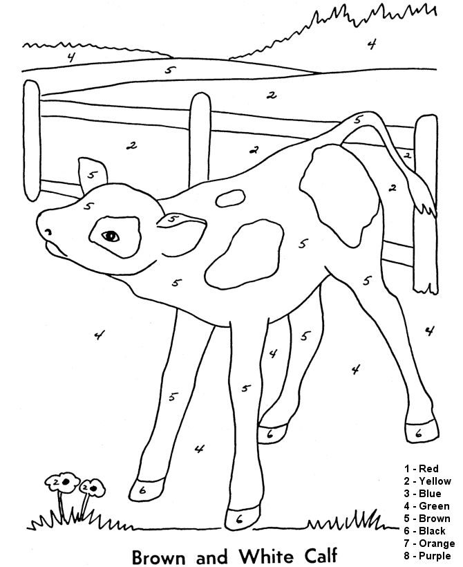 Color By Number Coloring Page Free Printable Farm Baby Calf Pages Featuring Animals