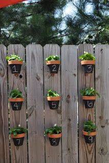 Kids paint and plant?? Potted plants hanging from fence tutorial ... this is perfect for my Chicago backyard! #springintothedream