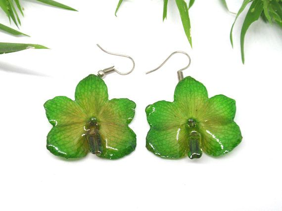 Real Orchid Flower Earrings Green Orchid Earrings Pressed Flower Resin Jewelry Botanical Earrings Orchid Earrings Flower Resin Jewelry Real Flower Jewelry