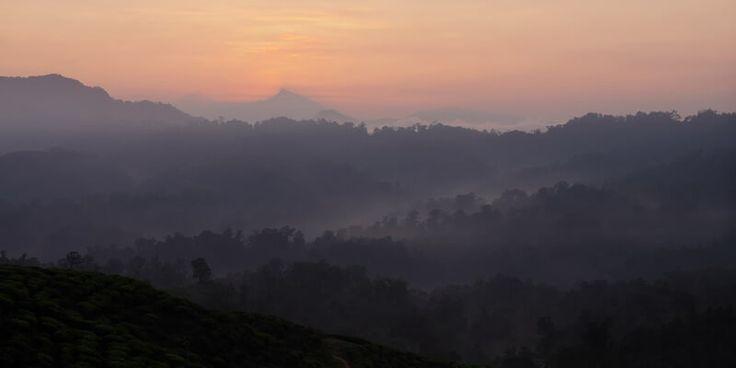 Wisata di Taman Nasional Gunung Halimun Salak