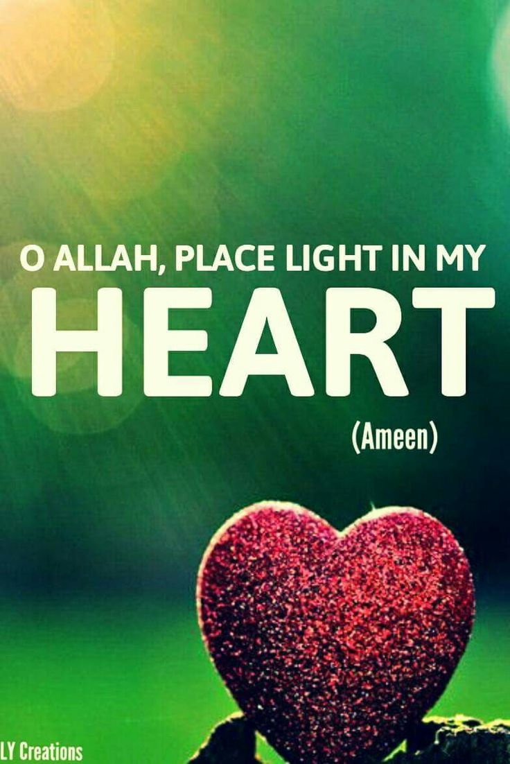 O Allah  place light in my heart