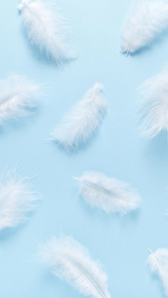 aesthetic pastel feather background pattern https