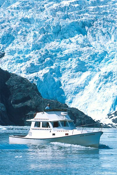 Seward Alaska whale watching, glacier viewing, wildlife and photography tours Kenai Fjords National Park