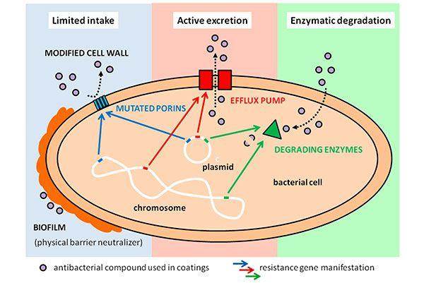 Speciale coating als wapen tegen ziekenhuisinfecties (via Engineeringnet.nl)