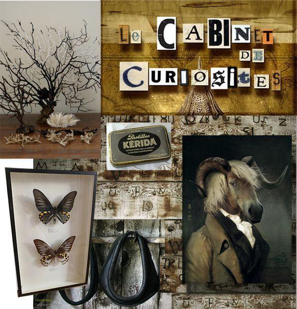 les 67 meilleures images du tableau cabinet curiosities. Black Bedroom Furniture Sets. Home Design Ideas